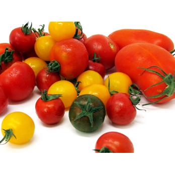 Tomaten - Mix, 1kg-Schale